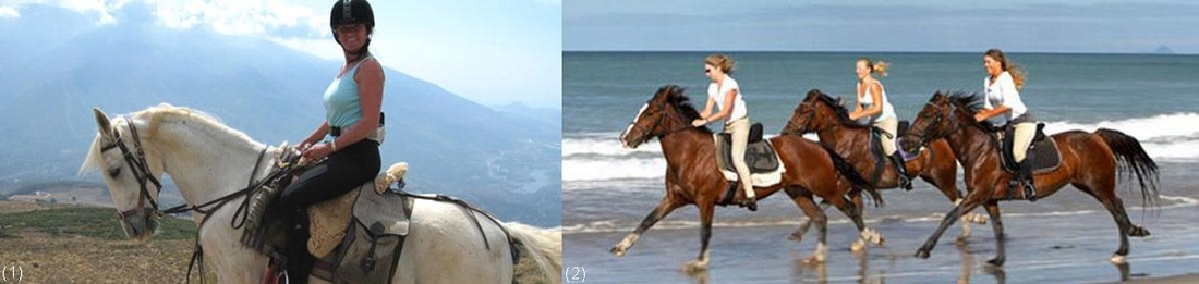 Turkey, Turkish, horse, horse riding, horseback
